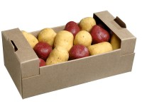 Tray of assorted potato shaped chocolates 200g